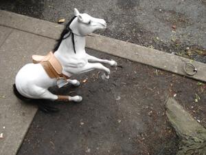 Portlandhorse