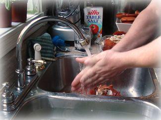 Handwashingfin