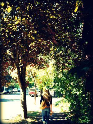 Fallwalkp2