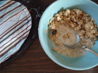 Cereal_bowl_2